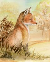 Red Fox by Dusty-Feather