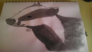 Mr Badger by Carrie-AnneSevenfold