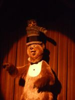 Country Bear Jamboree by melon-ramune