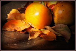 september is orange 23 by martaraff