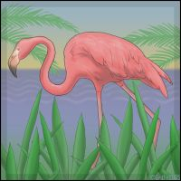 Flamingo by daggerstale