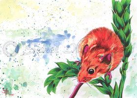 Spring Harvest Mouse by SweetIllustrations