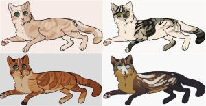 adoptables | super quick offer to adopt by sailinq