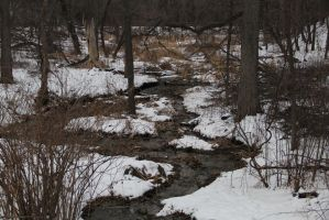 Coldwater Springs by SquareZer0