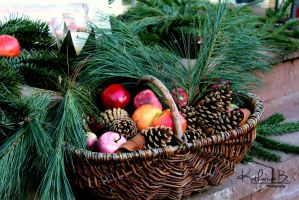 Basket by SunnyKatharina