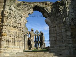 Whitby Abbey Ruins by Duamuteffe
