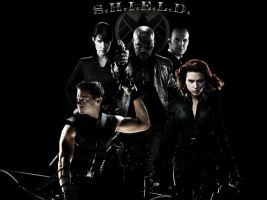 S.H.I.E.L.D. by Pinkorpse