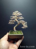 Large exhibition grade wire bonsai tree by Ken To by KenToArt