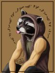 Raccoon Nation by forstyy