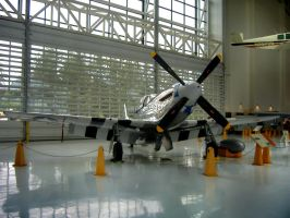 P-51 Mustang by Sidneys1