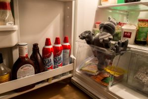 In the Fridge by Drake-Photography