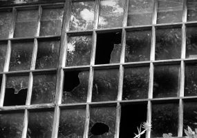 broken window by SieveN