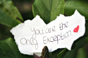 You Are The Only Exception by lovidation