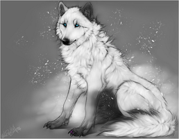 PC .:white fluffy in snow:. by WhiteSpiritWolf