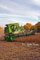Harvest 2009 5 by cthacker