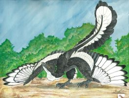 Archaeopteryx by Dragon--Feathers