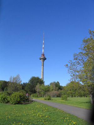 tv tower by jul-stock