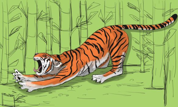 Tiger stretching by DitaDiPolvere