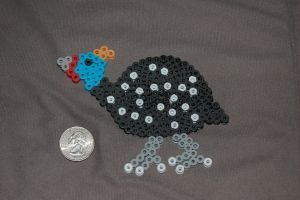 Guinea Fowl by evilpika
