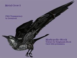 Metal Crow 3 - Jan18 08 by markopolio-stock