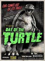 Day of the Turtle by ToshiakiBurtonRP