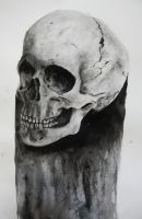 Ink Skull by LaurelArtz