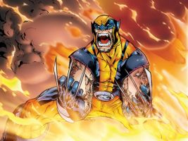 Wolverine on fire by clauderains1979