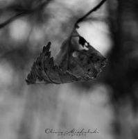 Withered Cradle. by OliviaMichalski