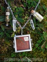 Faerie Specimen Necklace by Nashoba-Hostina