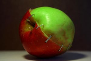 Apple GM Food 2 by Moseley92