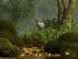 Dodo Creek by deskridge