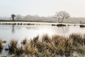 Frozen Pond by RKdesigns
