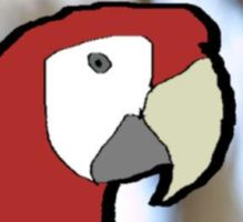Parrot by database404