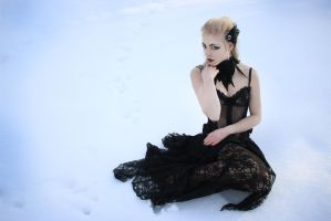 STOCK transparent gothic gown I by MyladyTane