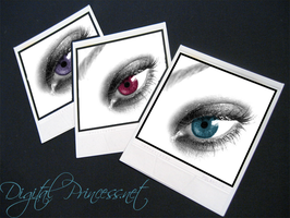 My New Site Header by DigitalPrincess