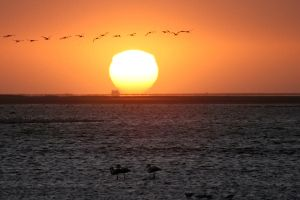 Sunset in Walvis Bay Namibia by EyeOfBoa