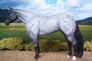 Blue roan Quarter Horse by ymagier