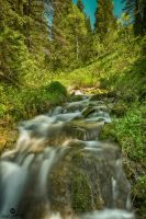 Green Colors and a Stream HDR by mjohanson