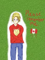 APH: Remember me by spongebobdeathnote