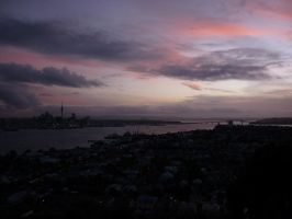 Auckland  habour by lmsgblh