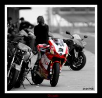 Ducati in Colour by tigerjet