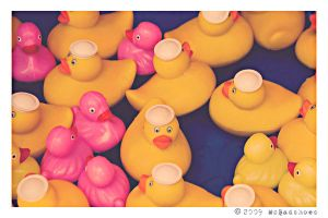 The Rubber Duckie Game by mcbadshoes