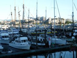 Harbour 8 by raindroppe