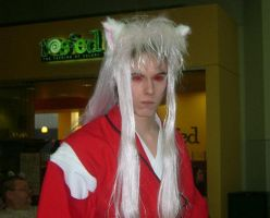 Demon Inuyasha by Dragonrider1227