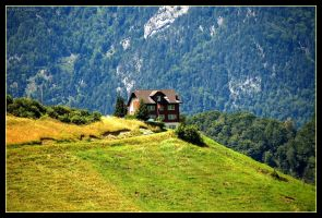 Swiss Home by IceGripp