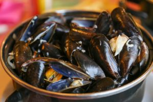 Mussels in wine sauce by patchow