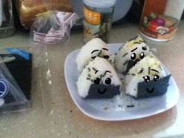 RICE BALLS by Rin-luver