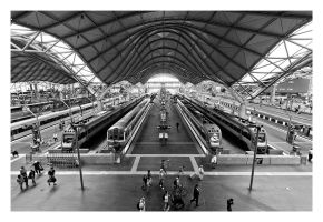 Southern Cross Station by Cameron-Jung