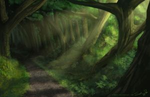 Another forest by Rynnay