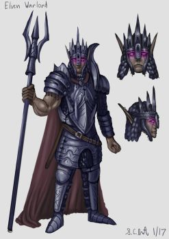 Elven Warlord Concept by Samo94